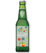 beer bottle template vettoriale
